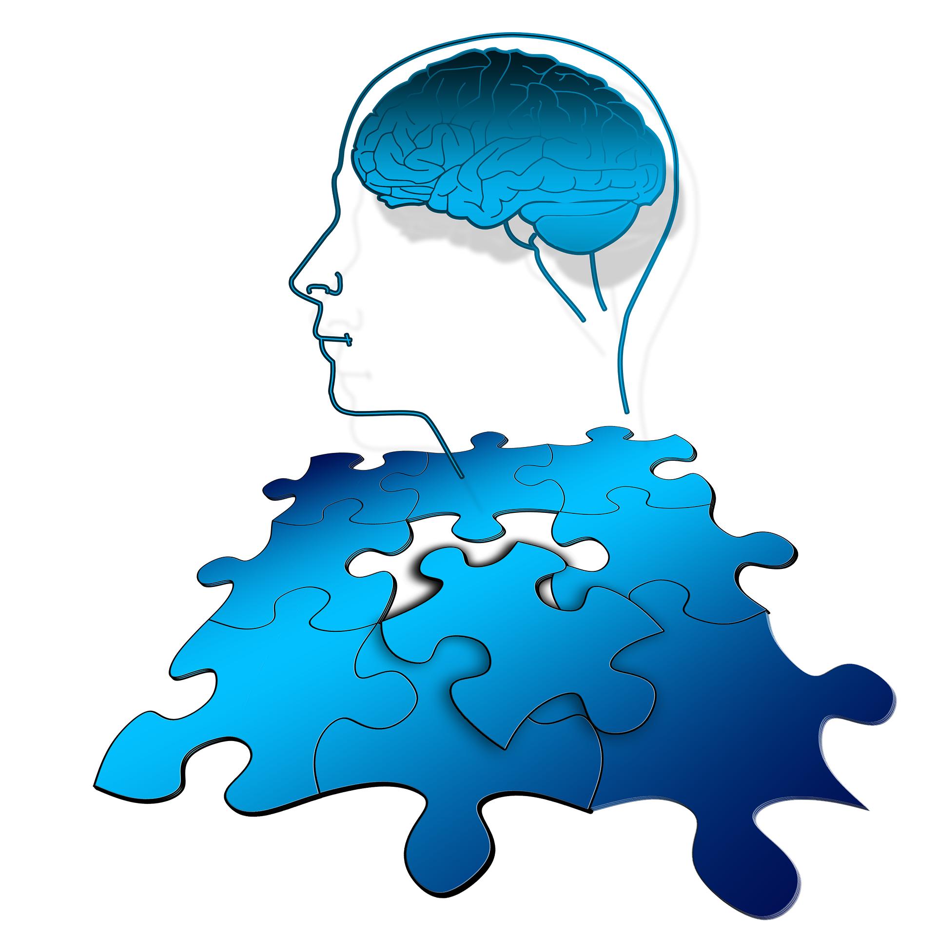 Hur du och din hjärna fungerar