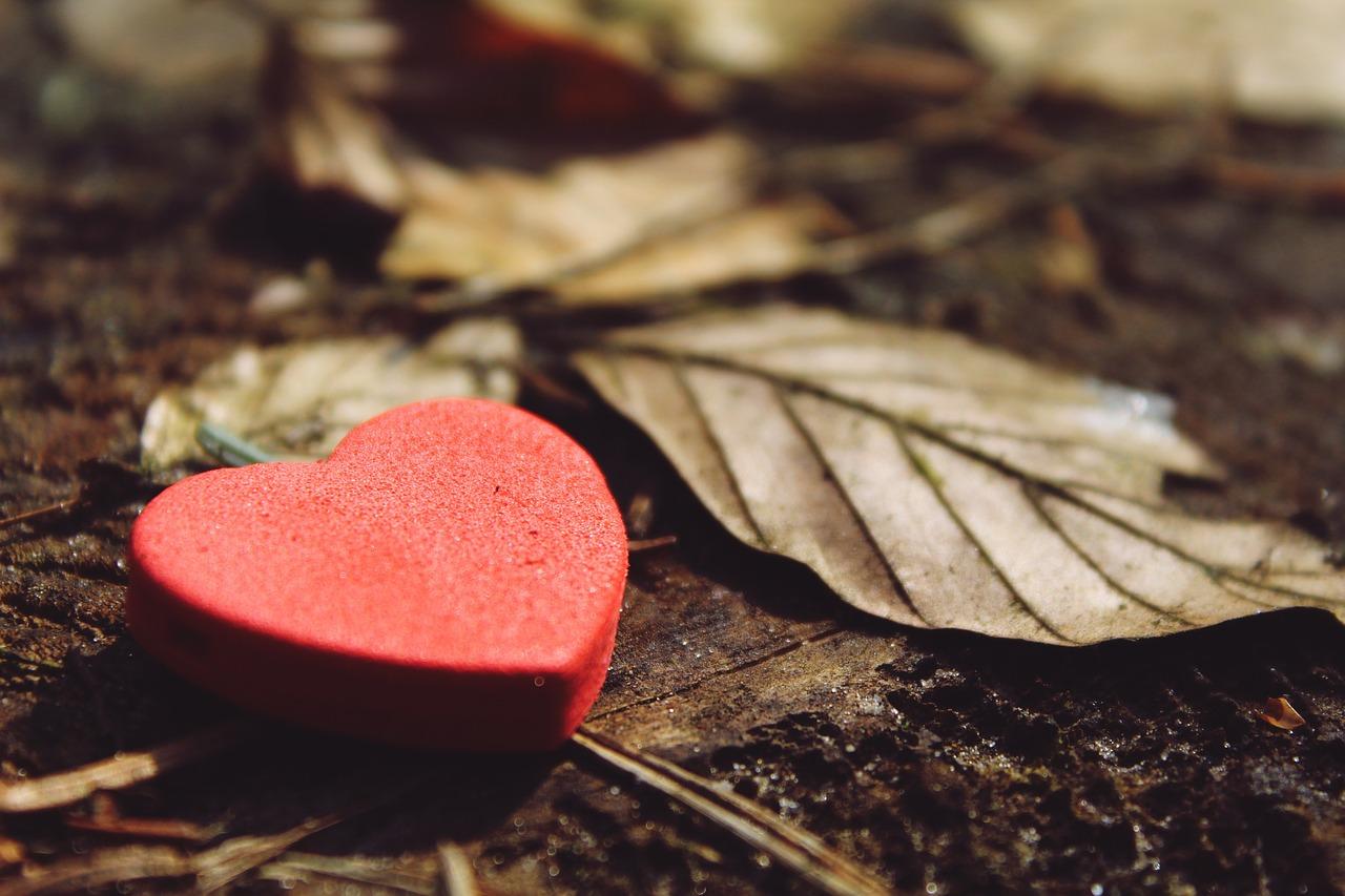 Förändring-Torsdag; Vad är du tacksam över?
