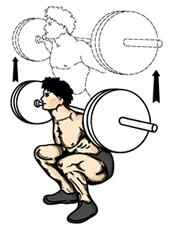 squat knäböj gjord med stång