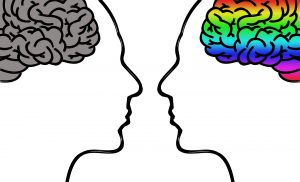 Individuella hjärnhalvor