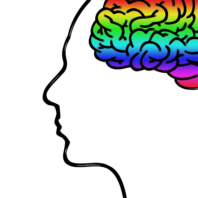 Hur du och din hjärna fungerar del 1